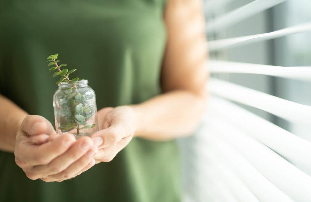 Frau hält Glas mit Pflaze in der Hand