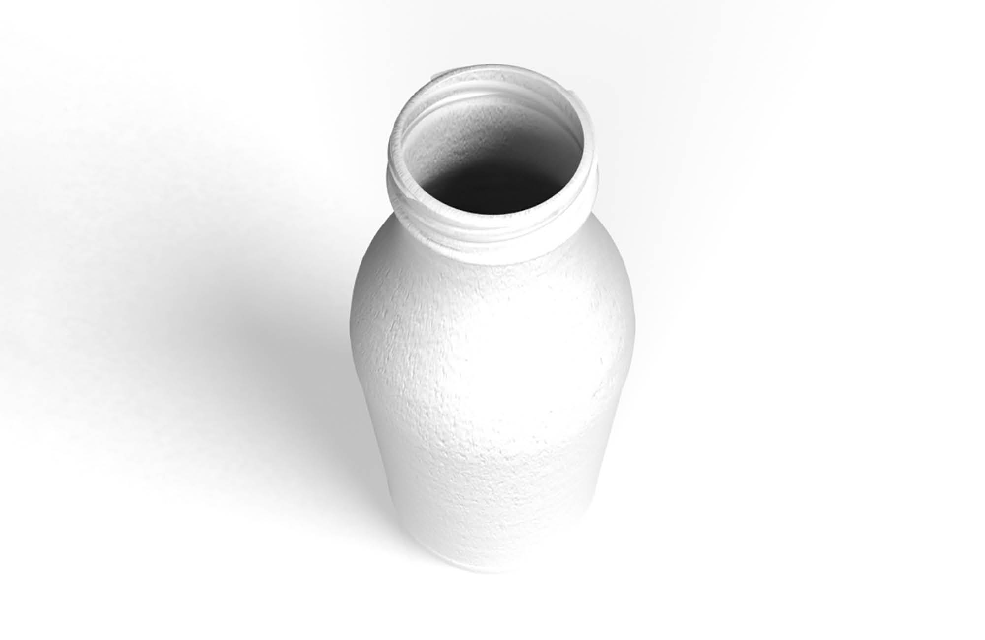 3 D print of the developed bottle